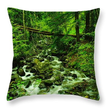 Running Down The Mountain Throw Pillow by Jeff Swan