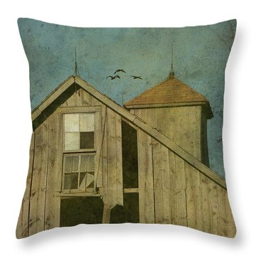 Rural Iowa Barn 5 Throw Pillow by Cassie Peters