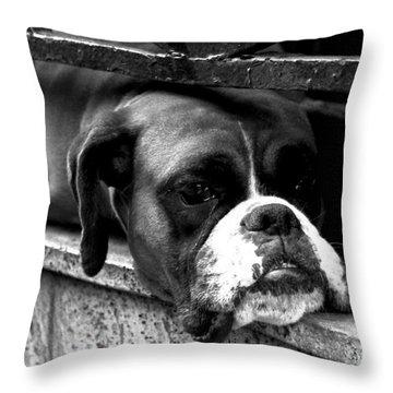 Rush Hour... Throw Pillow by Alan Harman