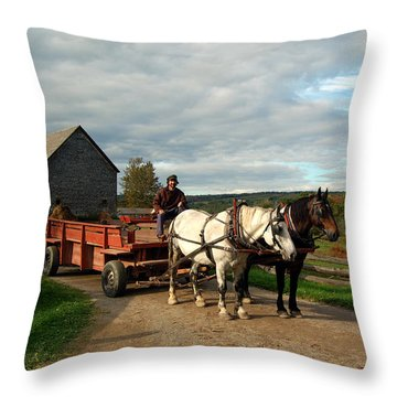 Rush Hour Throw Pillow by Ron Haist