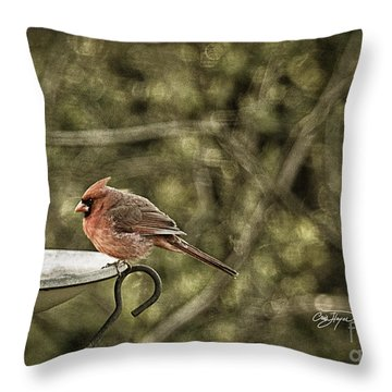 Rustic Cardinal Throw Pillow by Cris Hayes