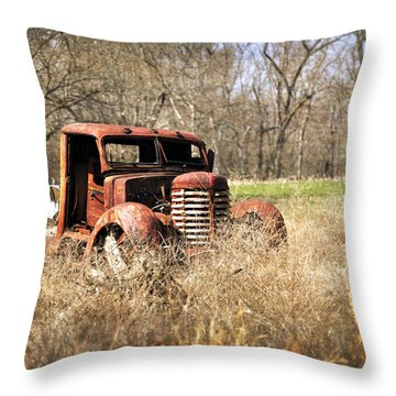 Rusting Away Throw Pillow by Marty Koch