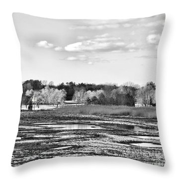 Rye Countryside Throw Pillow by Marcia Lee Jones