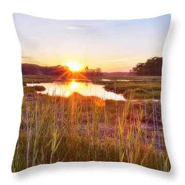Rye Marsh Sunset Throw Pillow by Eric Gendron