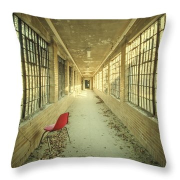 Sadly Acknowledged Throw Pillow by Evelina Kremsdorf