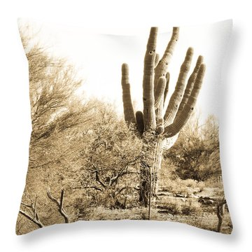 Saguaro Throw Pillow by Judi FitzPatrick
