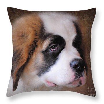 Saint Bernard Puppy Throw Pillow by Jai Johnson
