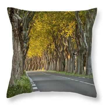Saint Remy Trees Throw Pillow by Brian Jannsen