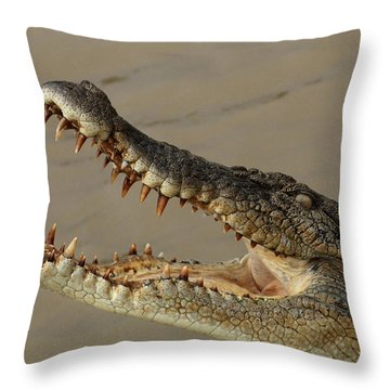 Salt Water Crocodile 1 Throw Pillow by Bob Christopher