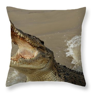 Salt Water Crocodile 2 Throw Pillow by Bob Christopher