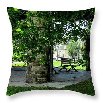 Sam Lawrence Park Hamilton Ontario Canada Throw Pillow by Danielle  Parent