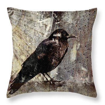 Same Crow Different Day Throw Pillow by Carol Leigh