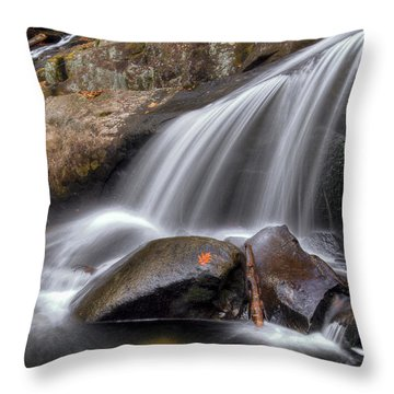 Sassy Waters Throw Pillow by Debra and Dave Vanderlaan