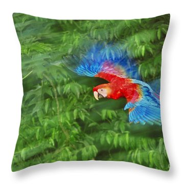 Scarlet Macaw Juvenile In Flight Throw Pillow by Frans Lanting MINT Images