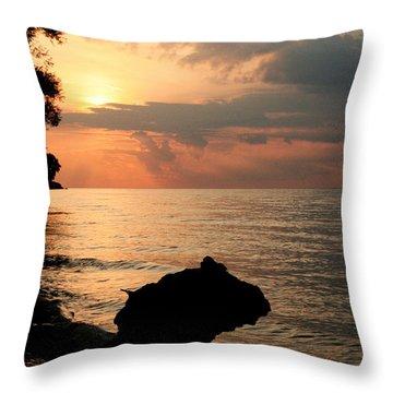 Scenic Beach Driftwood Sunset Throw Pillow by Heather Allen