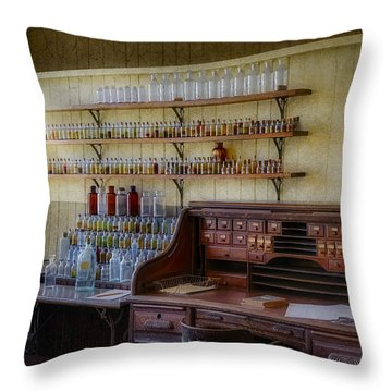 Scientist Office Throw Pillow by Susan Candelario