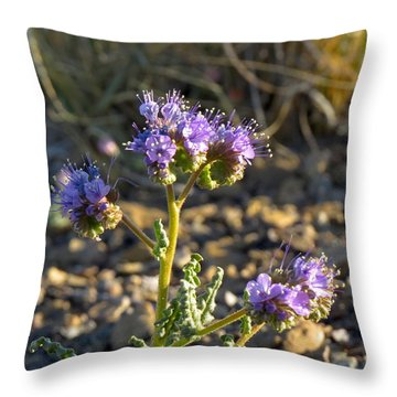 Scorpionweed Throw Pillow by Feva  Fotos