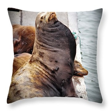 Sea Lion Throw Pillow by Robert Bales
