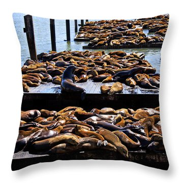 Sea Lions At Pier 39  Throw Pillow by Garry Gay