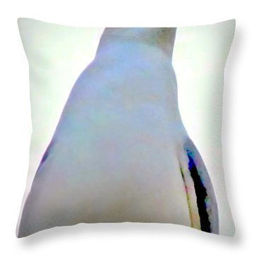 Seagull Close Up View Throw Pillow by Danielle  Parent
