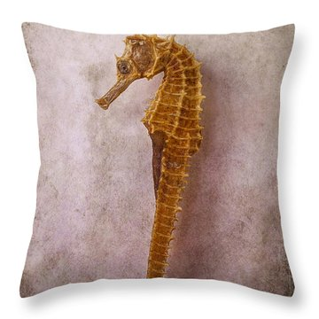 Seahorse Still Life Throw Pillow by Garry Gay