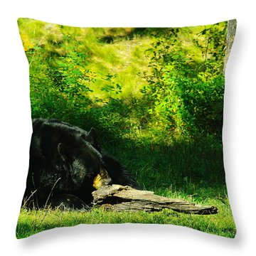 Searching For That Last Termite Throw Pillow by Jeff Swan