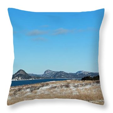 Seascape - Panorama Throw Pillow by Barbara Griffin