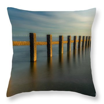 Seascape Wales Throw Pillow by Adrian Evans