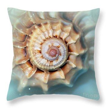 Seashell Wall Art 13 - Spiral Of Harpa Ventricosa Throw Pillow by Kaye Menner