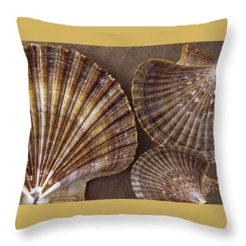 Seashells Spectacular No 7 Throw Pillow by Ben and Raisa Gertsberg