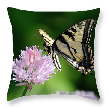 Second Nature Butterfly Throw Pillow by Christina Rollo