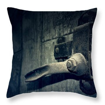 Secrets Within Throw Pillow by Trish Mistric