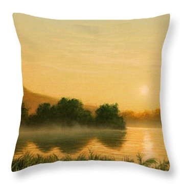 Seminole Sunset Throw Pillow by Jerry LoFaro