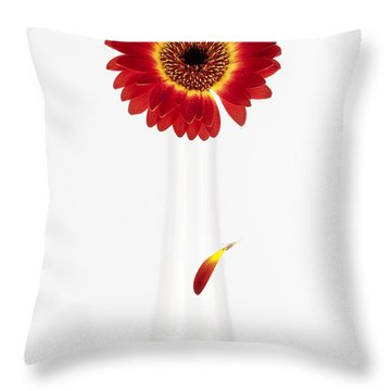 Separation Throw Pillow by Dave Bowman