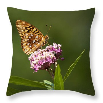 Serendipity Butterfly Throw Pillow by Christina Rollo