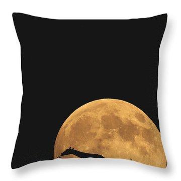 Serengeti Safari Throw Pillow by Carrie Ann Grippo-Pike