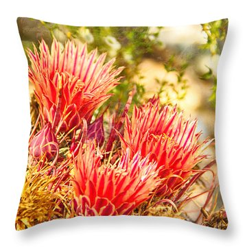 Serenity Throw Pillow by Judi FitzPatrick