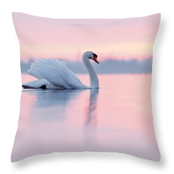 Serenity   Mute Swan At Sunset Throw Pillow by Roeselien Raimond