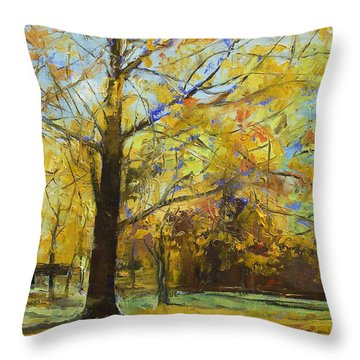 Shades Of Autumn Throw Pillow by Michael Creese