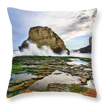 Shark Fin Cove Throw Pillow by Jamie Pham