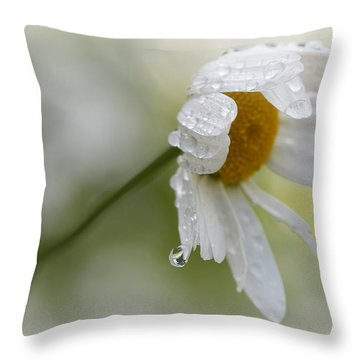 Shedding A Tear Throw Pillow by Lisa Knechtel