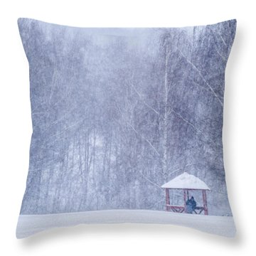 Shelter In The Storm - Featured 3 Throw Pillow by Alexander Senin