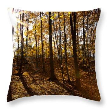 Shining Sun In The Woods Throw Pillow by Kamil Swiatek