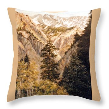 Shirley Temple Mine Throw Pillow by Donna Tucker