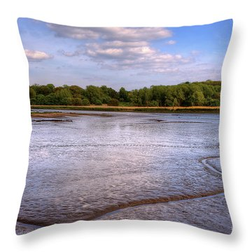 Shore Line Throw Pillow by Svetlana Sewell