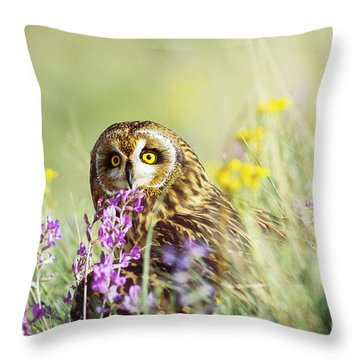 Short-eared Owl Throw Pillow by Thomas and Pat Leeson