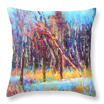 Signs Of Spring - Trees And Snow Kissed By Spring Light Throw Pillow by Talya Johnson