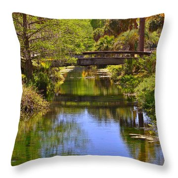 Silver Springs Florida Throw Pillow by Christine Till