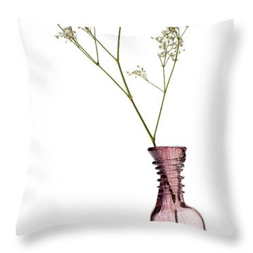 Simplicity Throw Pillow by Dave Bowman