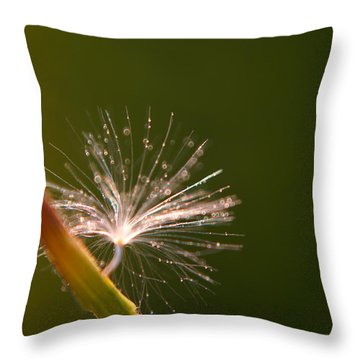 Simpliest Beauty Throw Pillow by Aimelle